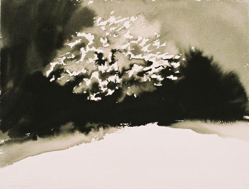 5 Landschap OI-Inkt 25×37 cm 2007