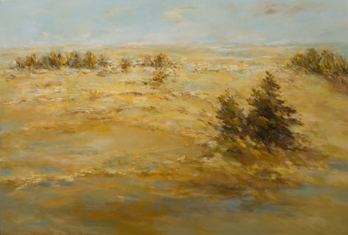 _DSC5347 Hautes Fagnes Olieverf 75 x 110 cm 2014