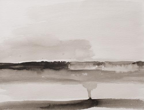 _DSC5336 Landschap O.I.-inkt 35 x 45 cm 2008
